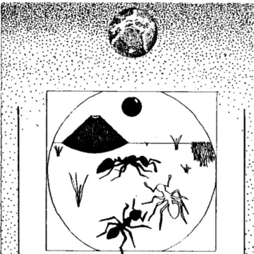 Ant Wars (Not Polyoptics).pdf