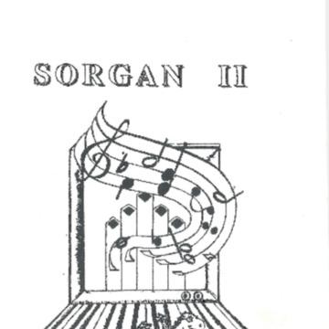 Sorgan II - new.pdf